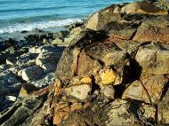 Asisbiz Textures Rocks Stones Pebbles Noosa National Park 03