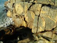 Asisbiz Textures Rocks Stones Pebbles Noosa National Park 04