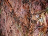 Asisbiz Textures Rocks Stones Pebbles Noosa National Park 13