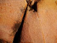 Asisbiz Textures Rocks Stones Pebbles Noosa National Park 14