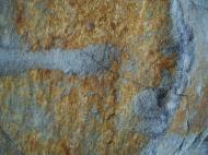 Asisbiz Textures Rocks Stones Pebbles Noosa National Park 16