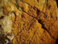 Asisbiz Textures Rocks Stones Pebbles Noosa National Park 24