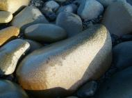 Asisbiz Textures Stones Pebbles Noosa National Park 10