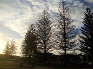 Asisbiz Australia Queensland Perigian Beach Pines 02