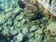 Asisbiz Textures Noosa Beach Life saltwater ponds 01