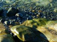 Asisbiz Textures Stones Pebbles Noosa National Park 04