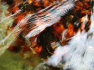 Asisbiz Textures Water Refections Nature Creek 08