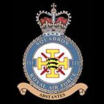 RAF 111Sqn emblem