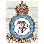 RAF 114Sqn emblem