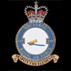 RAF 115Sqn emblem