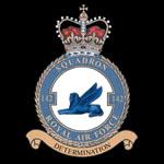 RAF 142Sqn emblem