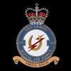 RAF 149Sqn emblem