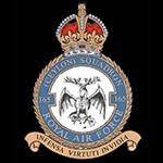 RAF 165Sqn emblem