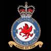 RAF 18Sqn emblem