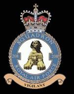 RAF 208Sqn emblem