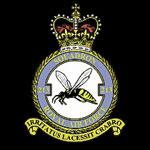 RAF 213Sqn emblem