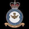 RAF 214Sqn emblem