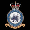 RAF 215Sqn emblem