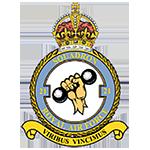 RAF 21Sqn emblem