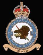 RAF 229Sqn emblem