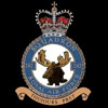 RAF 242Sqn emblem