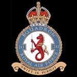 RAF 243Sqn emblem