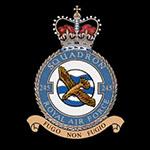 RAF 245Sqn emblem