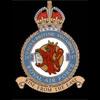 RAF 247Sqn emblem