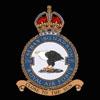 RAF 250Sqn emblem