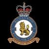 RAF 257Sqn emblem