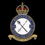 RAF 260Sqn emblem
