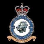 RAF 264Sqn emblem