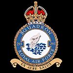 RAF 293Sqn emblem