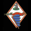 RAF 306Sqn emblem