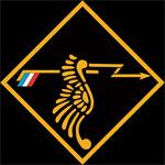 RAF 308Sqn emblem