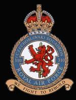 RAF 310Sqn emblem