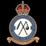 RAF 311Sqn emblem