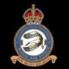 RAF 312Sqn emblem