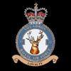 RAF 33Sqn emblem