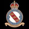RAF 341Sqn emblem