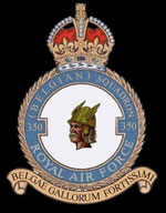 RAF 350Sqn emblem