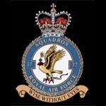 RAF 37Sqn emblem