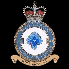 501 Squadron Crest