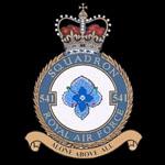 RAF 541Sqn emblem