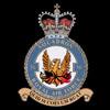 RAF 56Sqn emblem