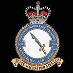 RAF 604Sqn emblem