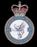 RAF 607Sqn emblem