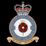 RAF 611Sqn emblem