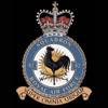 RAF 82Sqn emblem