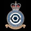 RAF 85Sqn emblem